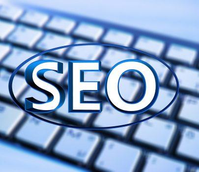 【事例紹介に追加】WordPressで独自ドメインを使用したい・SEO対策(基本)